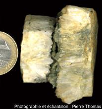 Filon rempli de quartz et de pyrite (Guerphales, Côtes d'Armor)