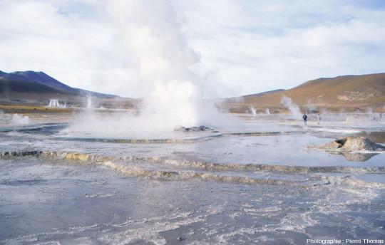 Vue générale du champ hydrothermal du Tatio (Andes chiliennes)