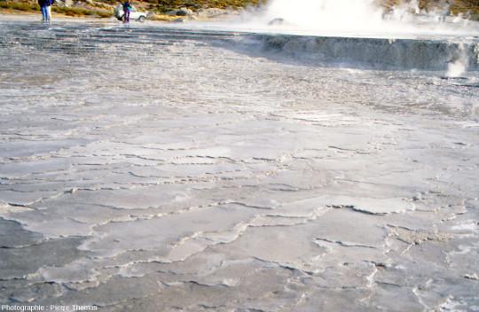 Dépôts de silice dans les champs hydrothermaux du Tatio