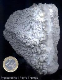 Échantillon de geyserite