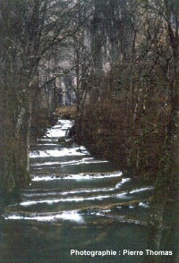 Série de gours étagés, ruisseau de Baume-les Messieurs (Jura)