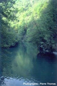 La couleur bleue de la Loue, quelques centaines de mètres en aval de sa source