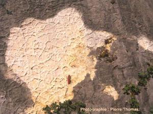 Vue détaillée d'une autre dalle située 300 m au nord montrant des fentes de dessiccation