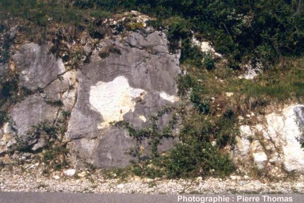 Vue globale d'une autre dalle située 300 m au nord montrant des fentes de dessiccation