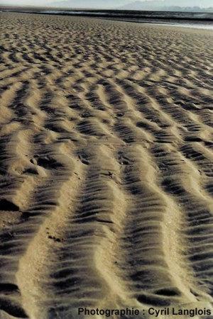 Rides actuelles de la plage de Villers sur mer (Calvados)