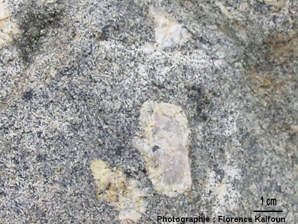 Vue rapprochée d'une feldspath à texture rapakivi
