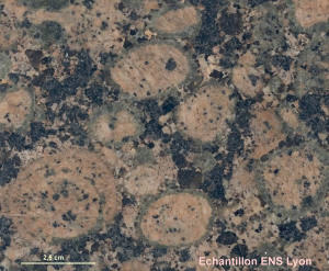 Granite de Finlande à texture rapakivi