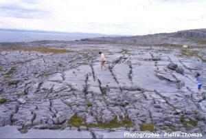 Vue générale du karst des Burren (Irlande)