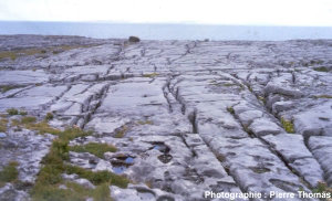 Autre vue générale du karst des Burren (Irlande)