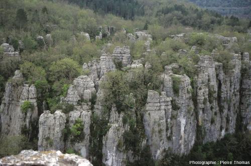 Vue de détail du karst de la vallée du Chassezac (Ardèche)
