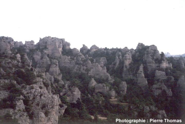 Vue d'ensemble du relief ruiniforme de Montpellier le Vieux (12)