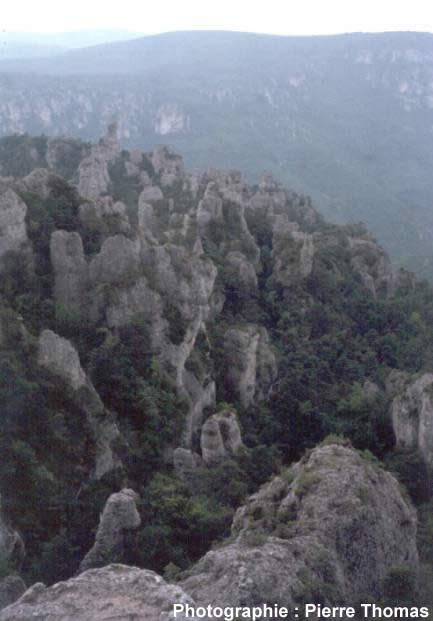 Vue du rebord du Causse Noir dominant la vallée de la Dourbie, montrant le développement du relief ruiniforme de Montpellier le Vieux (12) à la limite Sud du plateau