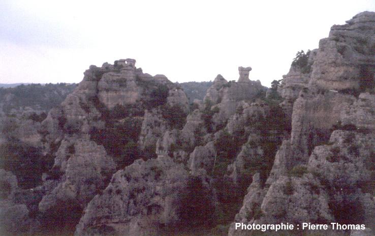 Vue de détail du relief ruiniforme de Montpellier le Vieux
