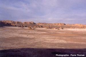 Vue générale de l'affleurement, désert d'Atacama (Chili)