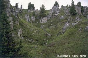 Morphologie de dissolution dans des gypses des environs de La Plagne (73)