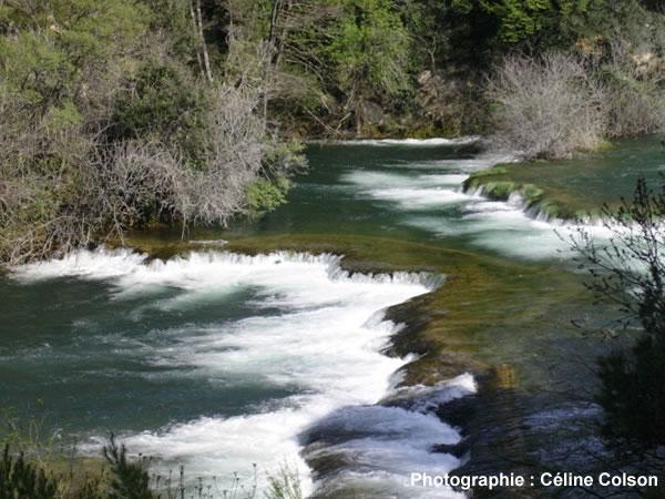 Rivière avec concrétions calcaires dans le parc national de Krka (Croatie)