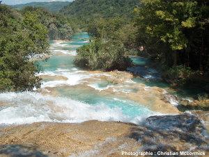 Vue vers l'aval de la rivière Aguas Azul dans le Yucatan mexicain