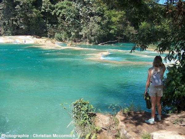 Rivière Aguas Azul dans le Yucatan mexicain