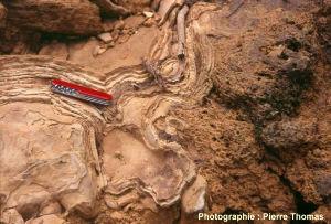 Structure interne des concrétions calcaires dans le ruisseau de Baume les Messieurs (Jura)