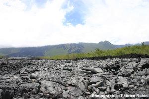 Vue générale d'une coulée du Piton de la Fournaise (La Réunion)