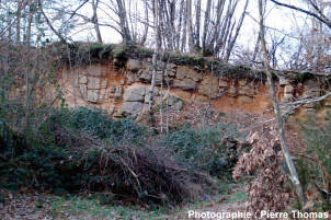 Vue générale: carrière située dans un leucogranite des Monts d'Ambazac (87), en voie d'arénisation