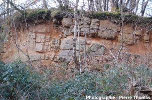 Vue rapprochée: carrière située dans un leucogranite des Monts d'Ambazac (87)