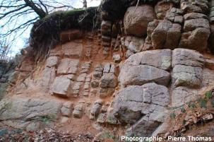 Leucogranite des Monts d'Ambazac (Haute Vienne), en voie d'arénisation