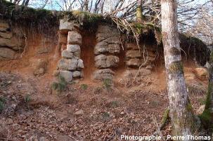 Autre point de vue: carrière située dans un leucogranite des Monts d'Ambazac (87)