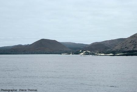 La plage blanche constituée à 80% de radioles d'oursin, sur la côte d'une île volcanique des Galapagos