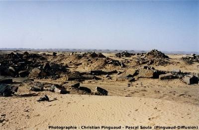 Le gisement d'Erfoud, Maroc