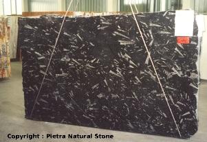 Plaque riche en othocères extraite du gisement d'Erfoud