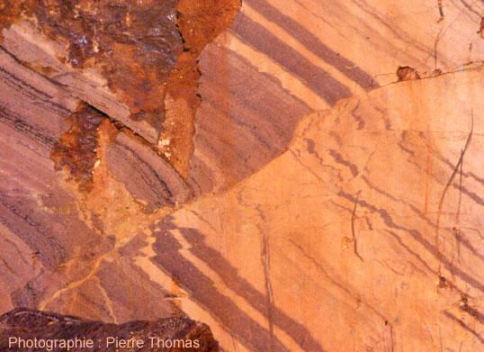 Faille inverse affectant des calcaires du Dévonien de la Montagne Noire, légèrement métamorphisés (carrière de Félines-Minervois, Hérault)