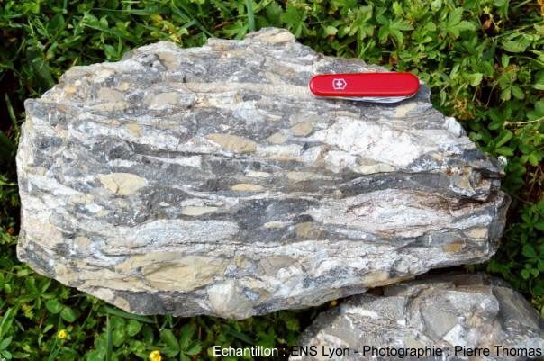 Vue d'ensemble d'un conglomérat étiré (méta-conglomérat) du Beaufortin (Savoie)