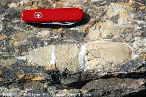 Galet de dolomie du Trias moyen, tronçonné par des fentes de calcite