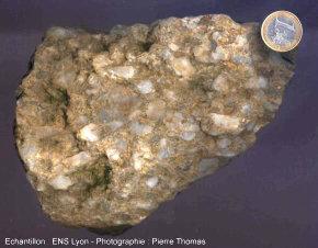 Conglomérat non déformé, du Carbonifère supérieur de Graissessac (34)