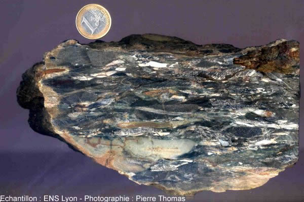 Méta-conglomérat légèrement étiré, Carbonifère inférieur de Ferrières sur Sichon (Allier)