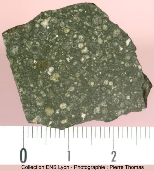 Section polie de la météorite d'Allende