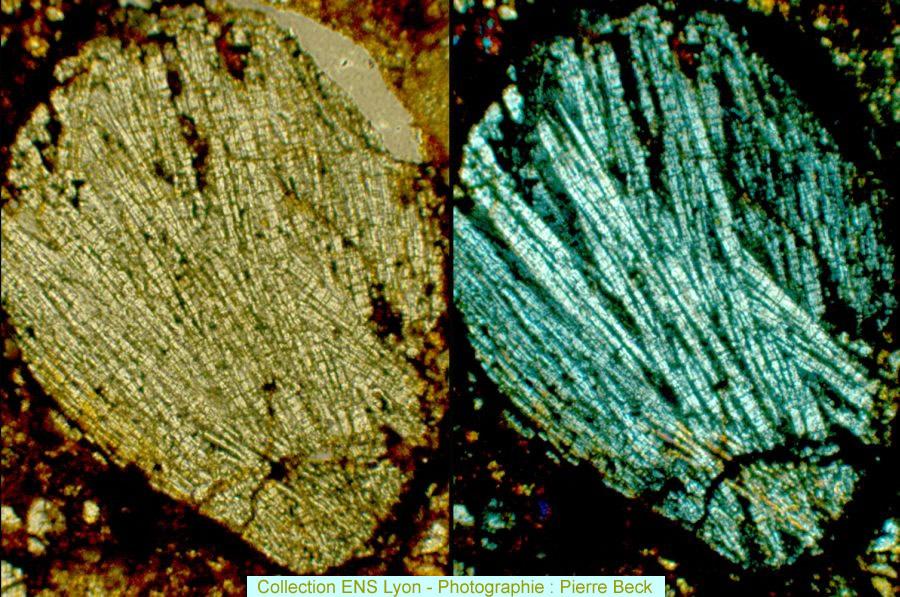 Vues en LPNA et LPA d'un chondre non porphyrique (diamètre ≈1 mm) dans la chondrite ACFER359, de type L6