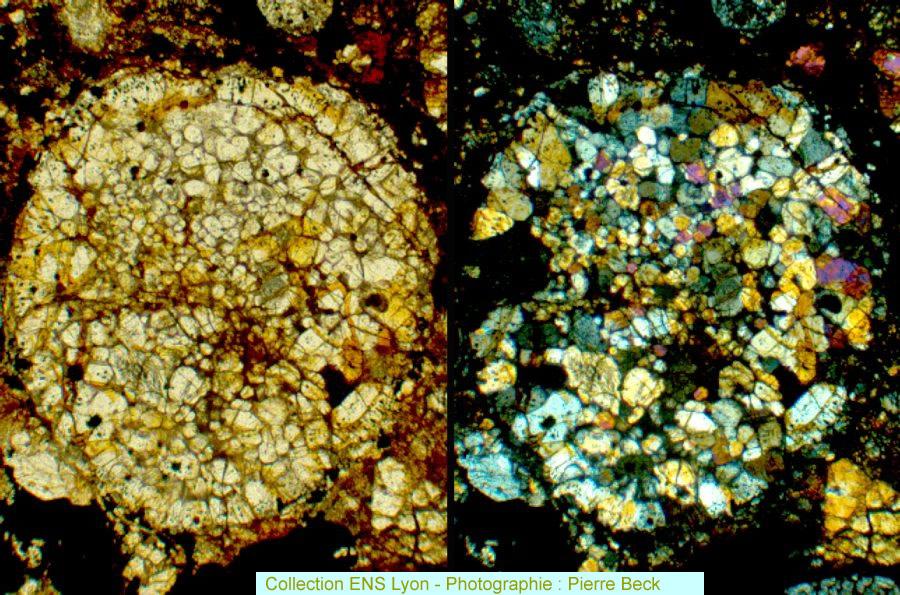 Vues en LPNA et LPA d'un chondre porphyrique (diamètre ≈1mm) de la chondrite TAN068