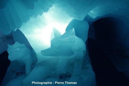 Litage des strates annuelles visibles dans une sculpture sur glace, glacier de la Chiaupe (Savoie)