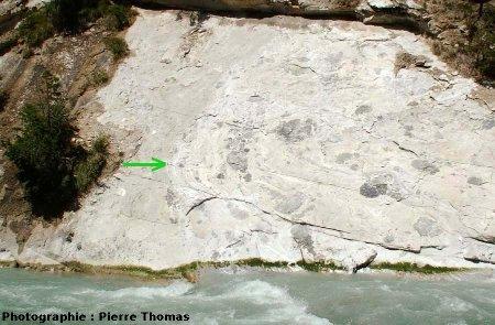 Localisation des plis de l'image 8 (flèche verte) sur une vue générale de l'affleurement