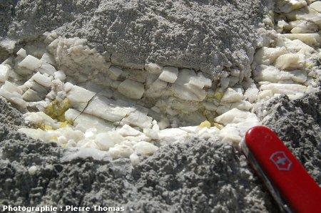 Soufre natif au sein d'un filonnet de calcite traversant une masse de carbonates sombres (riches en matière organique)