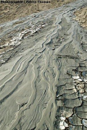 Vue semi détaillée de la coulée Sud du volcan de boue n°1, Nirano (Italie)