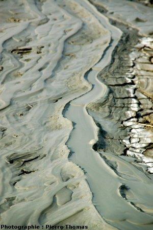 Vue détaillée de l'amont d'une coulée de boue, montrant de très belles bordures, encore appelées levées, moraines ou digues, ainsi que 4 « vagues », Nirano (Italie)