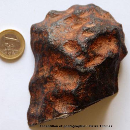Surface brute (opposée à la face polie) de la météorite de Gibbeon des figures 3 et 4, avec croûte de fusion
