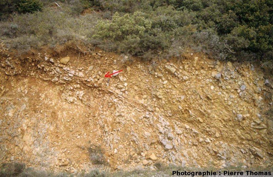 Vue générale de l'affleurement où se situe le galet cisaillé (flèche rouge), Coustouge (11)