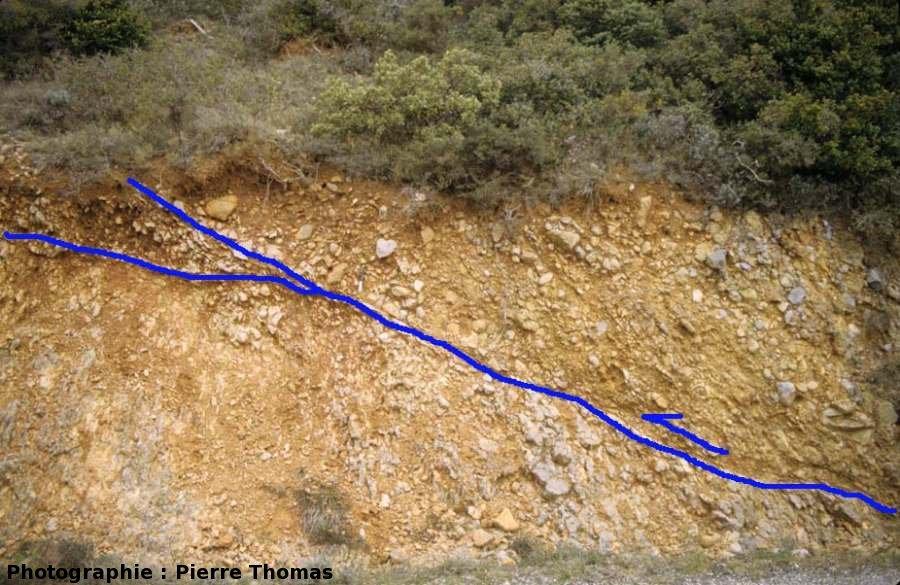 Interprétation structurale générale de l'affleurement traversé par une faille inverse chevauchante, Coustouge (11)