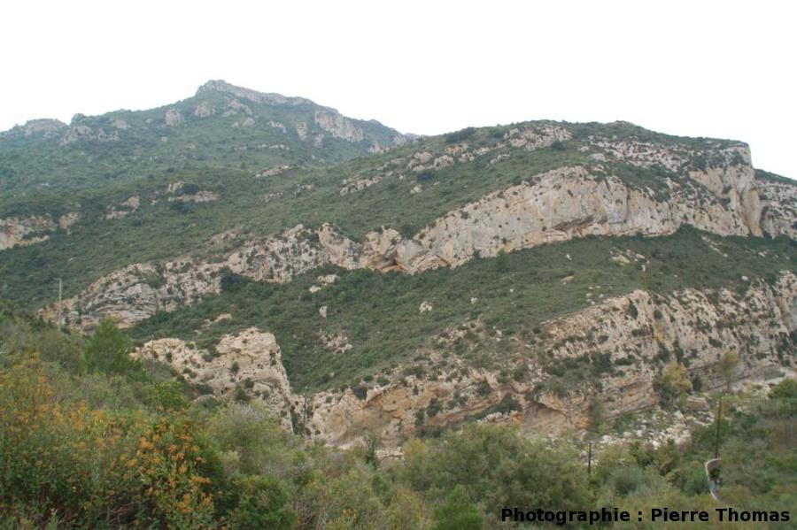 Vue générale de l'affleurement, Paderne (Aude)
