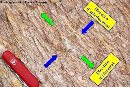 Interprétation tectonique de l'affleurement, nappe des Corbières, Pont de Ripaud (11)