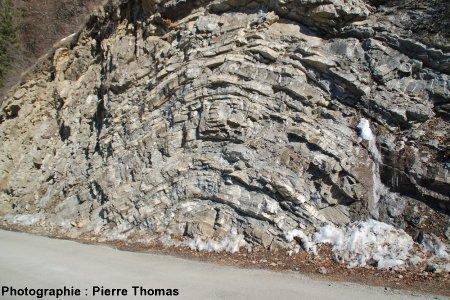 Pli décamétrique dans la nappe des flyschs à helminthoïdes, Ancelle (Hautes Alpes)